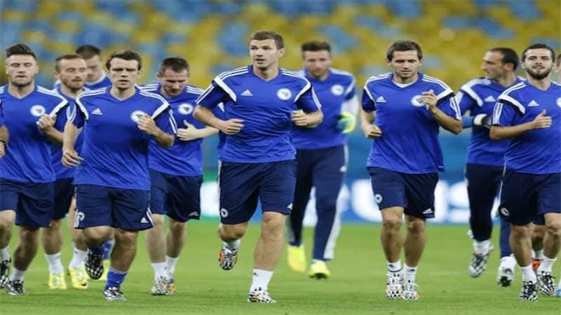 ทีมชาติบอสเนีย